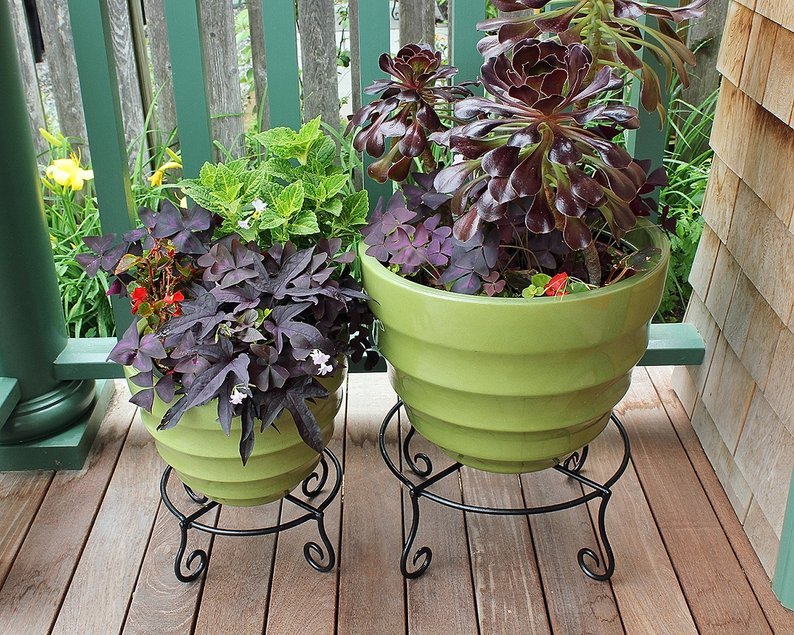 Casetify Designs Piazza Low Wrought Iron Plant Stand indoor/outdoor