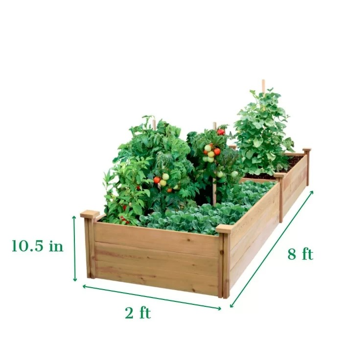 Citronella Original Cedar Wood Raised Garden Bed Planter For Vegetable Or Flowers