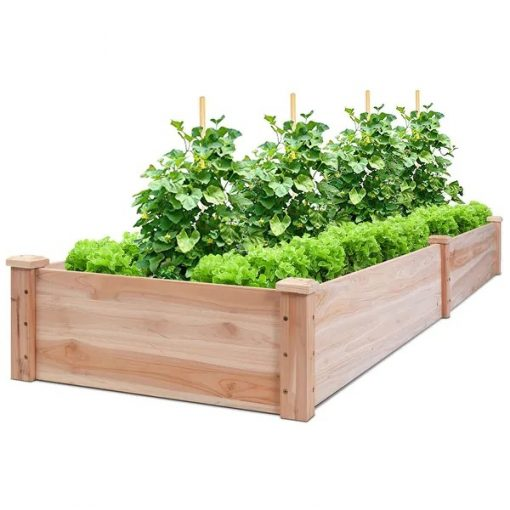 Citronella Original Cedar Wood Raised Garden Bed Planter