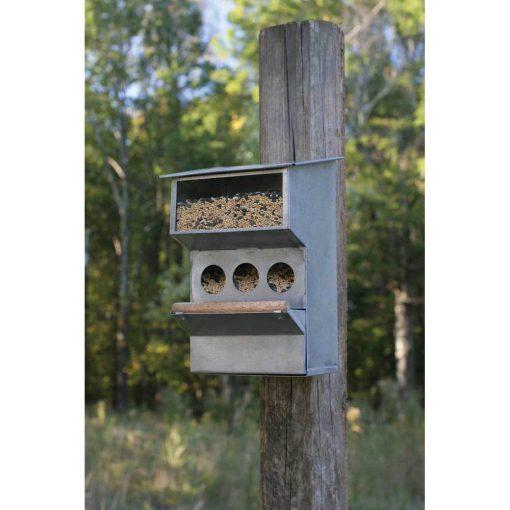 galvanized wall mounted backyard buddies bird feeder