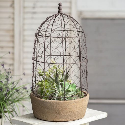 alia tall chicken wire cloche with terra cotta pot