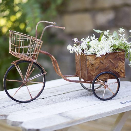 cirque charming delivery trike tricycle planter