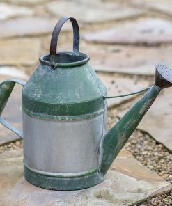 joni galvanized decorative watering can