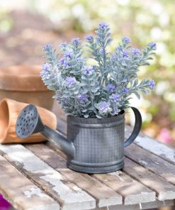 mitra galvanized portable mini watering can